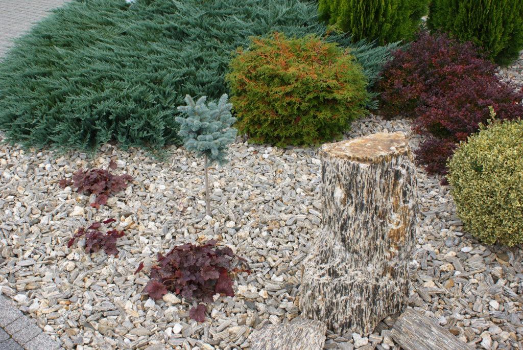 Aranżacją kory kamiennej i szpili gnejsowej
