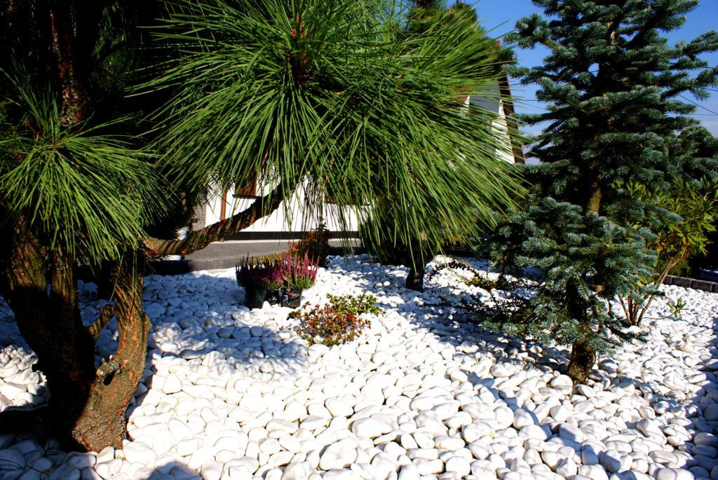 Kamień ogrodowy biały