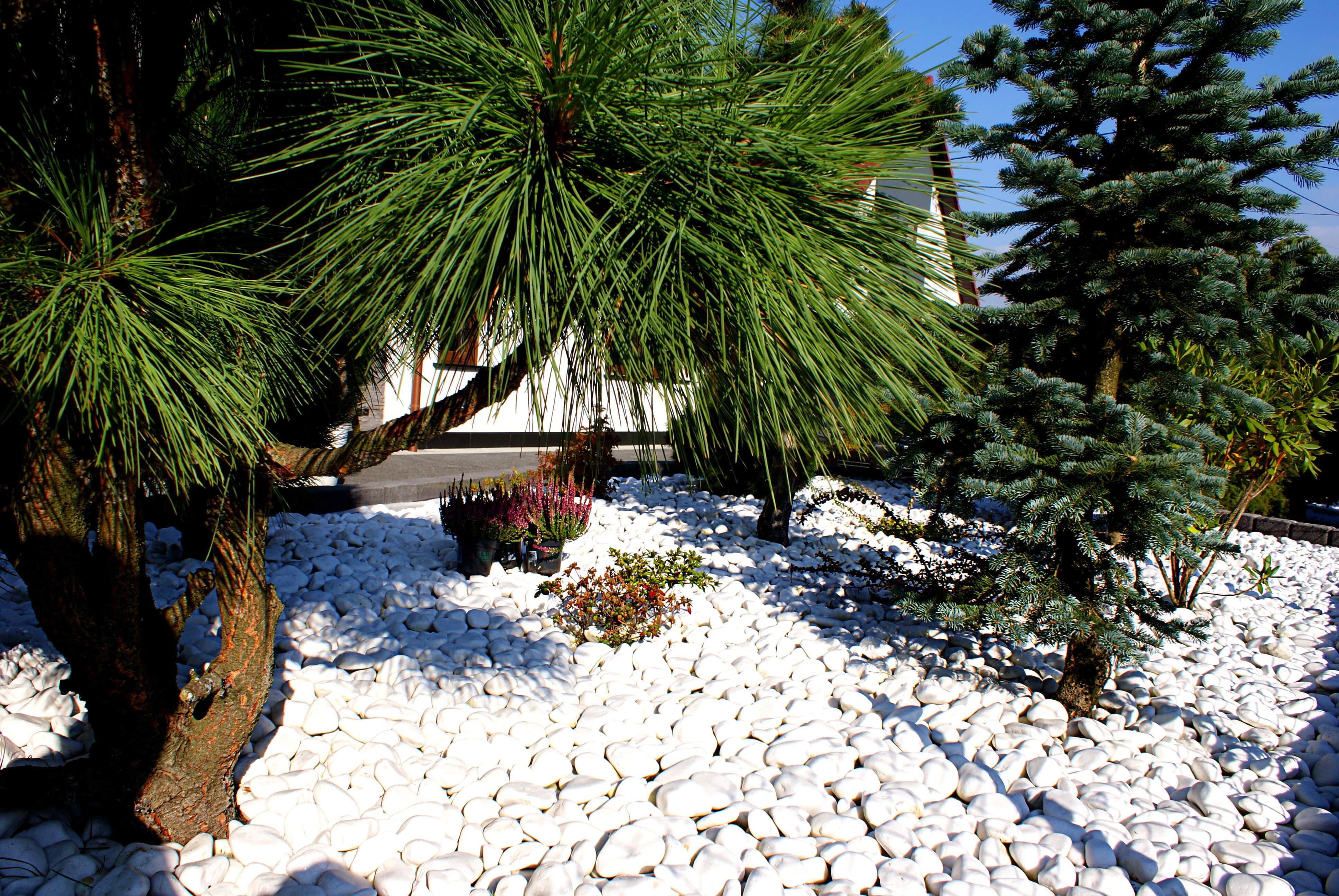Otoczaki białe Kamień ogrodowy Opole
