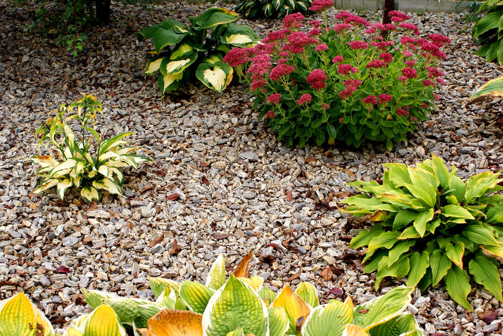 kamień ozdobny do ogrodu
