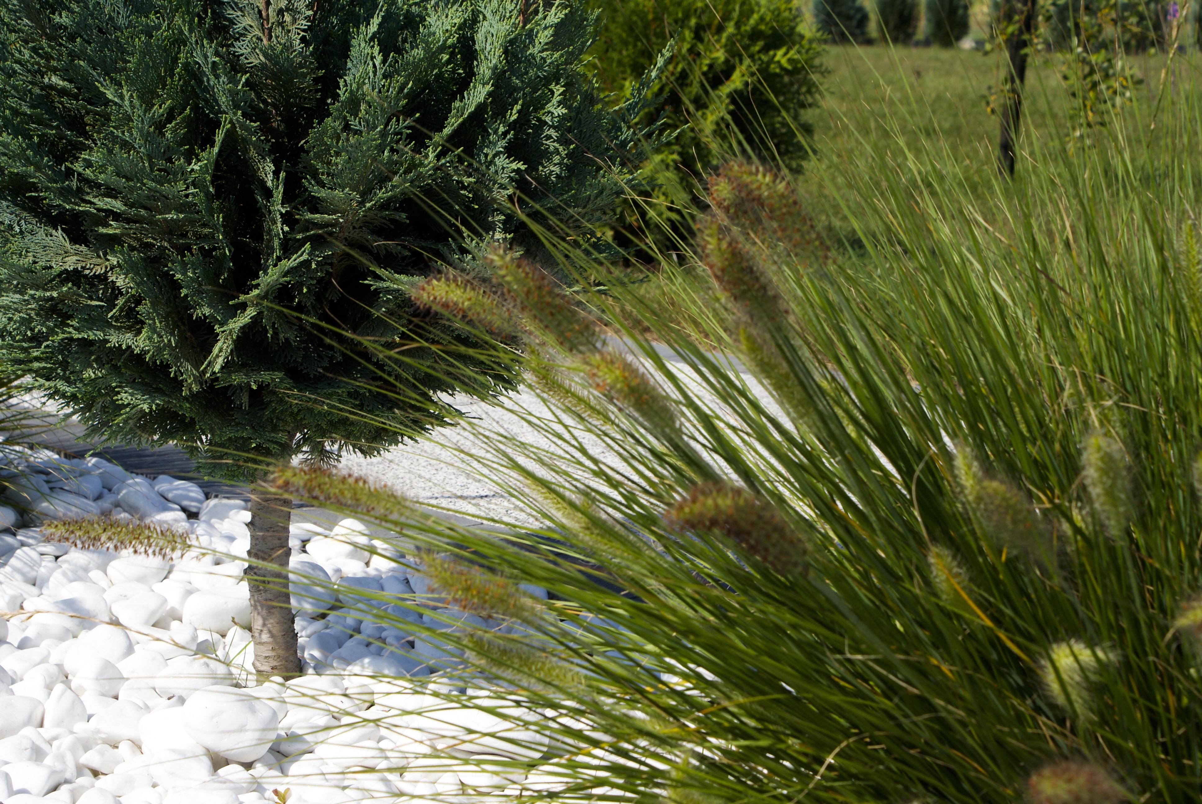 Kamien ogrodowy