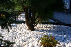 Biały kamień