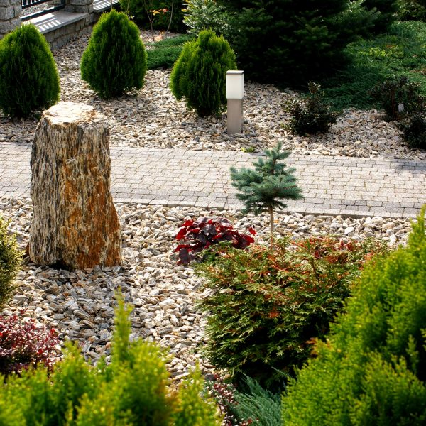 ogród z korą kamienna