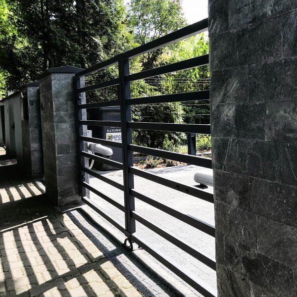 silver grey na ogrodzeniu
